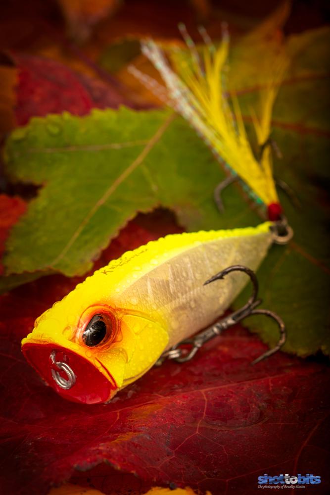 Duo Realis Popper 64 Autumn Colors