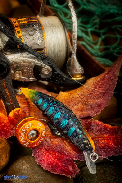 DUO SPEARHEAD RYUKI (DUO×D-3 custom Lure) Autumn Colours