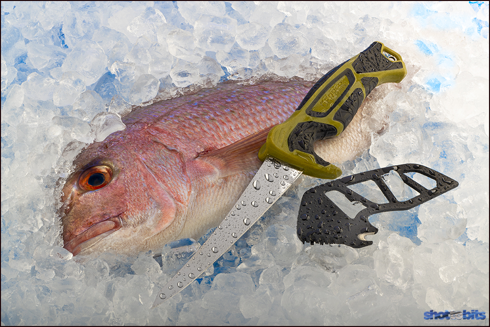 On Ice, Gerber Fish Promotion Image
